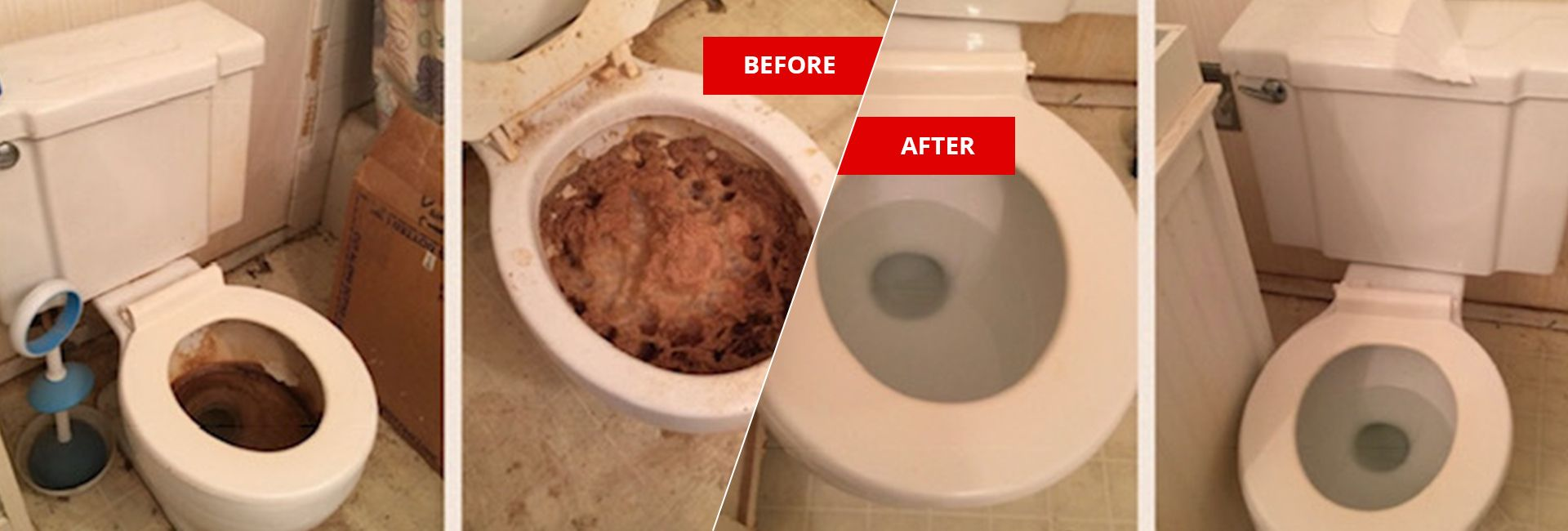 Feces-urine cleanup